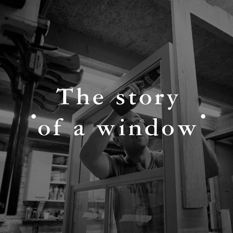 Case-Study-Window-01