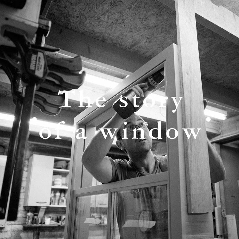 Case-Study-Window-02